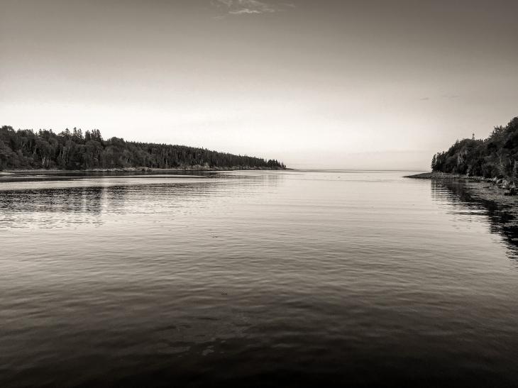 Otter Cove -- Acadia National Park, Maine (June 2015)iPhone 6 Plus + 29/2.2